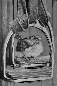 Fledgling Sparrow by Mike OConnell