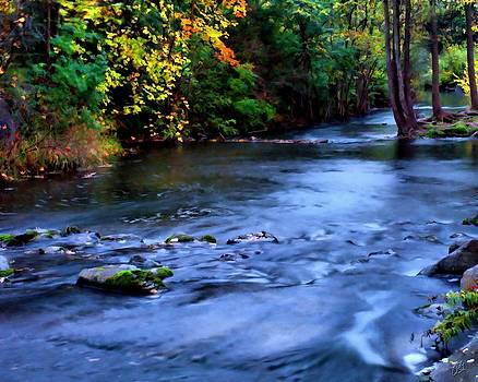 Fleming Creek Early Evening by Christopher Grove