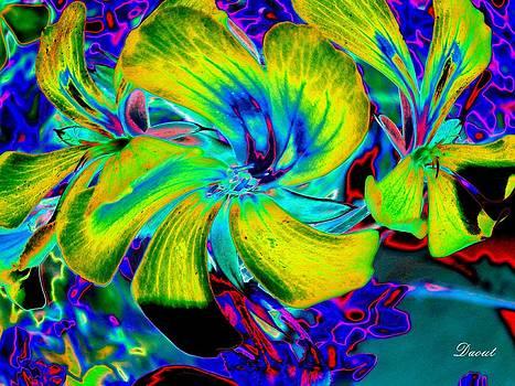 Fleurs folles  by Robert Daout