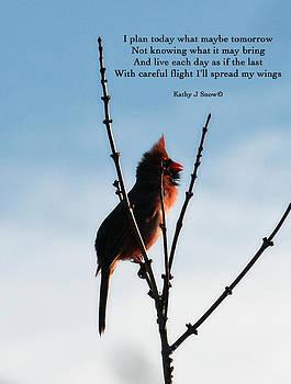 Kathy J Snow - Flight