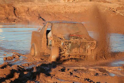 Flingin' Mud by David S Reynolds