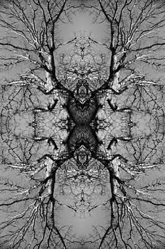 Tree No. 3 by Keith McGill