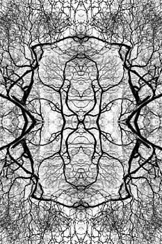 Tree No. 5 by Keith McGill