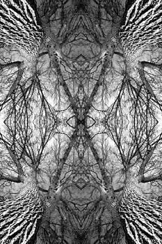 Tree No. 7 by Keith McGill