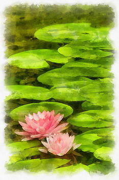 Floating Lotus Blossoms by Michael Flood