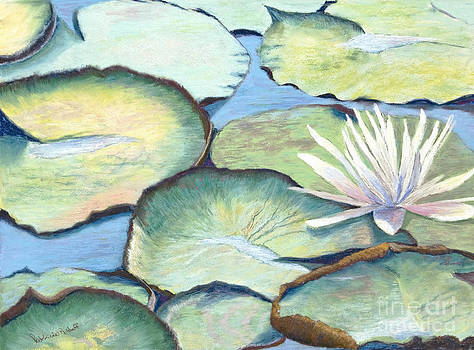 Floating Wonders by Patricia Huff
