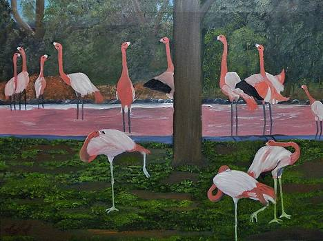 Flock of Flamingos by Donald Schrier