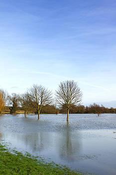 Fizzy Image - flood
