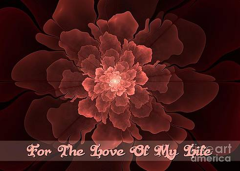 JH Designs - Flor de Amor Love of My Life