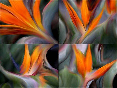 Flora Number 2 by Jan Edward Vogels