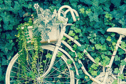 Floral Biker by Nancy Harrison