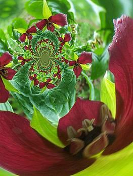 Gene Cyr - Floral Digi Manip 1