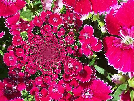 Gene Cyr - Floral Digi Manip 16