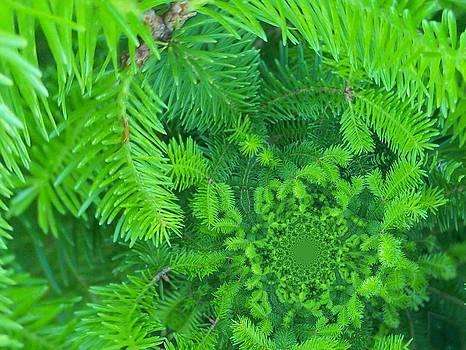 Gene Cyr - Floral Digi Manip 17