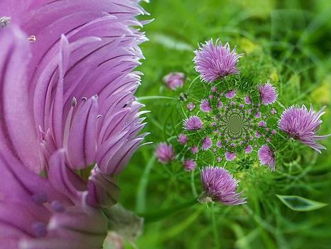 Gene Cyr - Floral Digi Manip 18
