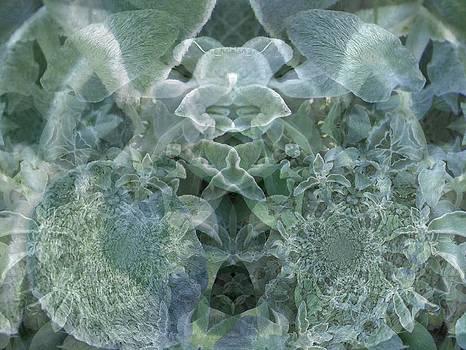 Gene Cyr - Floral Digi Manip 19