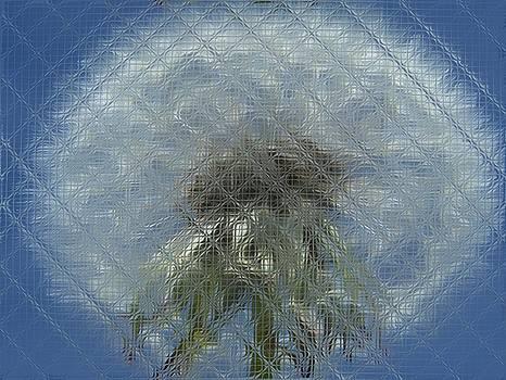 Gene Cyr - Floral Digi Manip 30