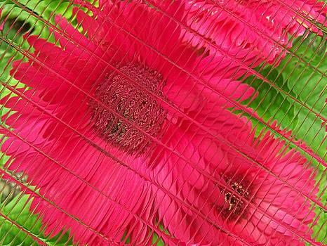 Gene Cyr - Floral Digi Manip 34