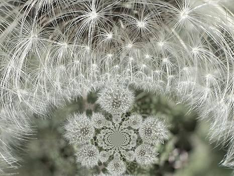 Gene Cyr - Floral Digi Manip 4
