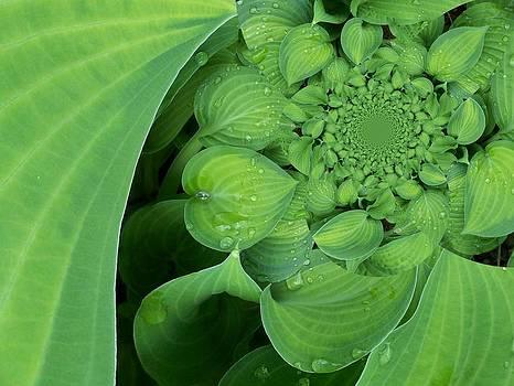 Gene Cyr - Floral Digi Manip 9