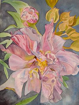 Susan Duxter - Floral for Glynnis