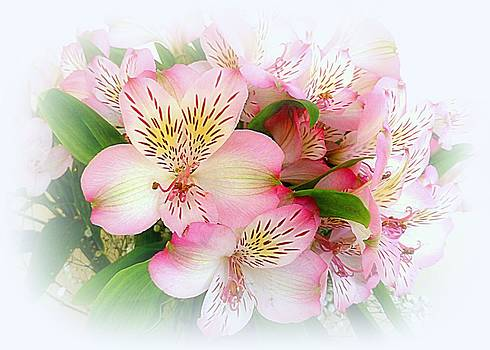 Bishopston Fine Art - Floral Greetings