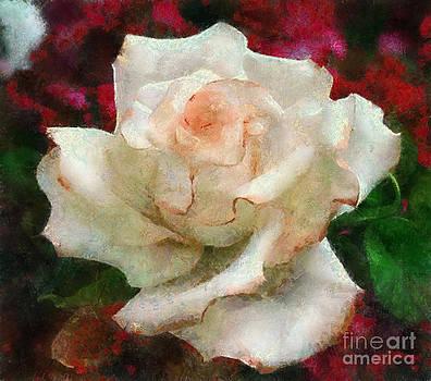Scott B Bennett - Floral Trim