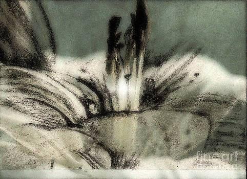 Floral by Yanni Theodorou