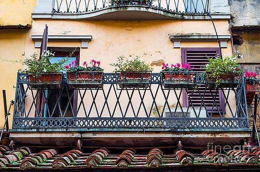 Florence Balcony by Luis Alvarenga