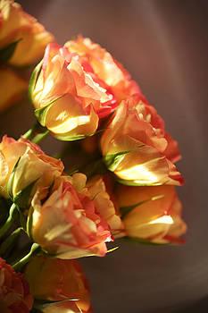 Flores de mi suenos1 by Pablo Rivera