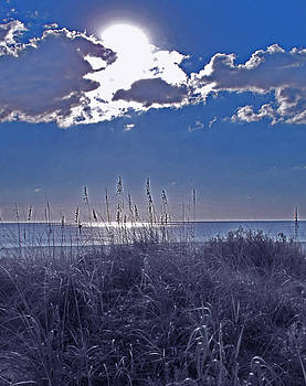 Ian  MacDonald - Florida Blue