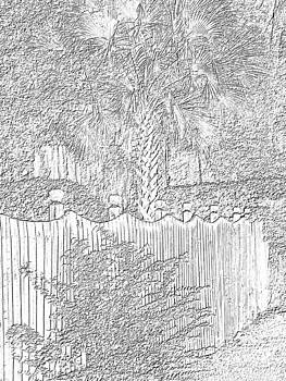 Florida Charcoal Fence  by Annette Allman