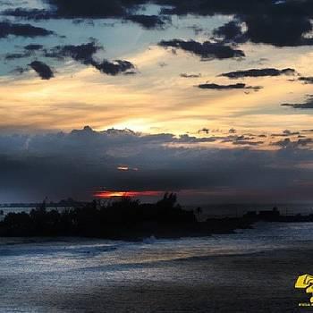 Florida Coast by Ron Johnson