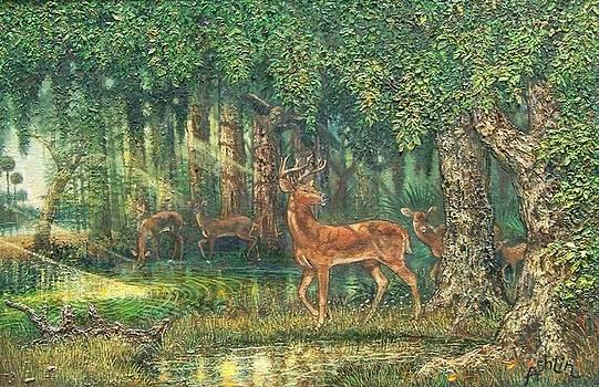 Florida Deer in Wekiva 4 by Sheila Tibbs