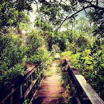 Florida Foliage 2 by K Simmons Luna