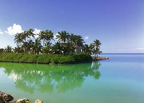 Florida Keys Island by Tropigallery -