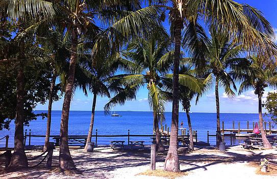 Florida Keys by Tropigallery -