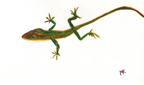 Florida Lizard by Mickey Krause