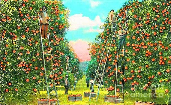 Florida Orange Pickers 1920 by Annette Allman