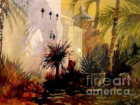 Florida Palms by Jerry Aissis