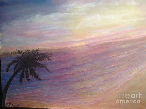 Florida  Purple sunset by Linea App