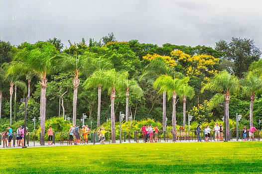 Florida  by Saibal Ghosh