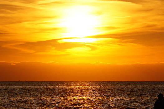 Florida Sun by Chris Reeder