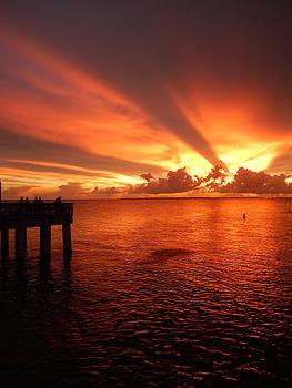 Florida Sunset 003 by Nola Hintzel