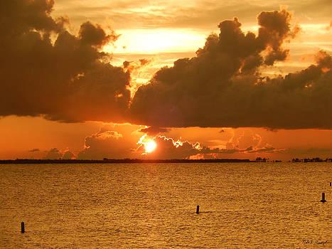 Florida Sunset 005 by Nola Hintzel