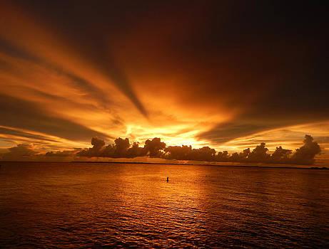 Florida Sunset 009 by Nola Hintzel