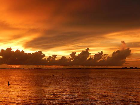 Florida Sunset 011 by Nola Hintzel