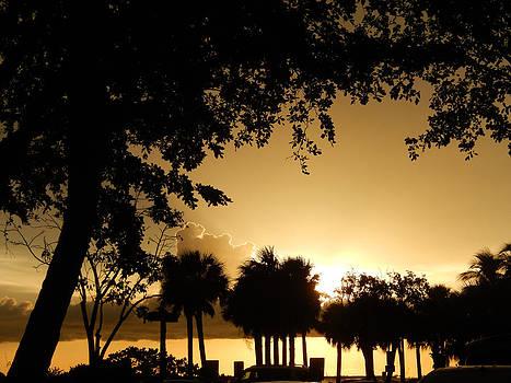 Florida Sunset 013 by Nola Hintzel