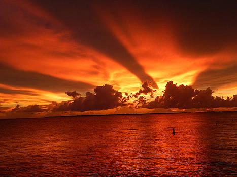 Florida Sunset 019 by Nola Hintzel