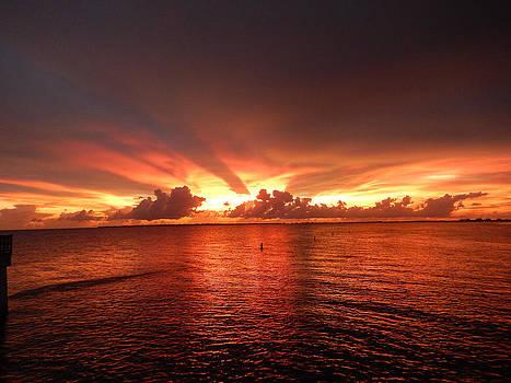 Florida Sunset 020 by Nola Hintzel